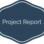 projectreport